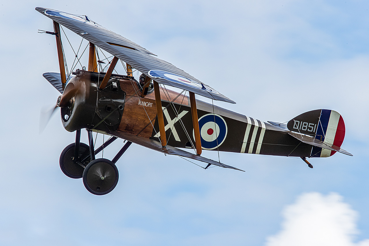 Sopwith CAMEL  -  © by Will Moore